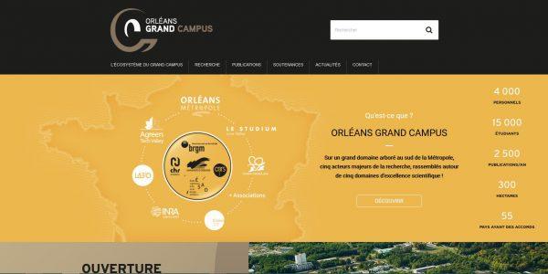 Création Site institutionnel Orléans